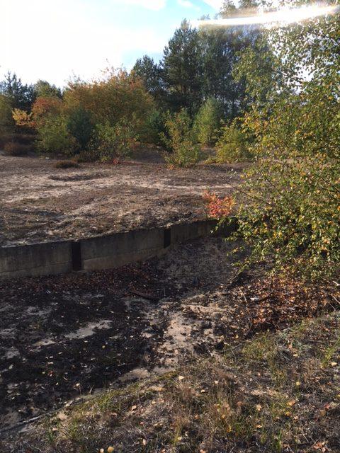 verlassenes feld in brandenburg, wald, bunker, graben, 2. Weltkrieg