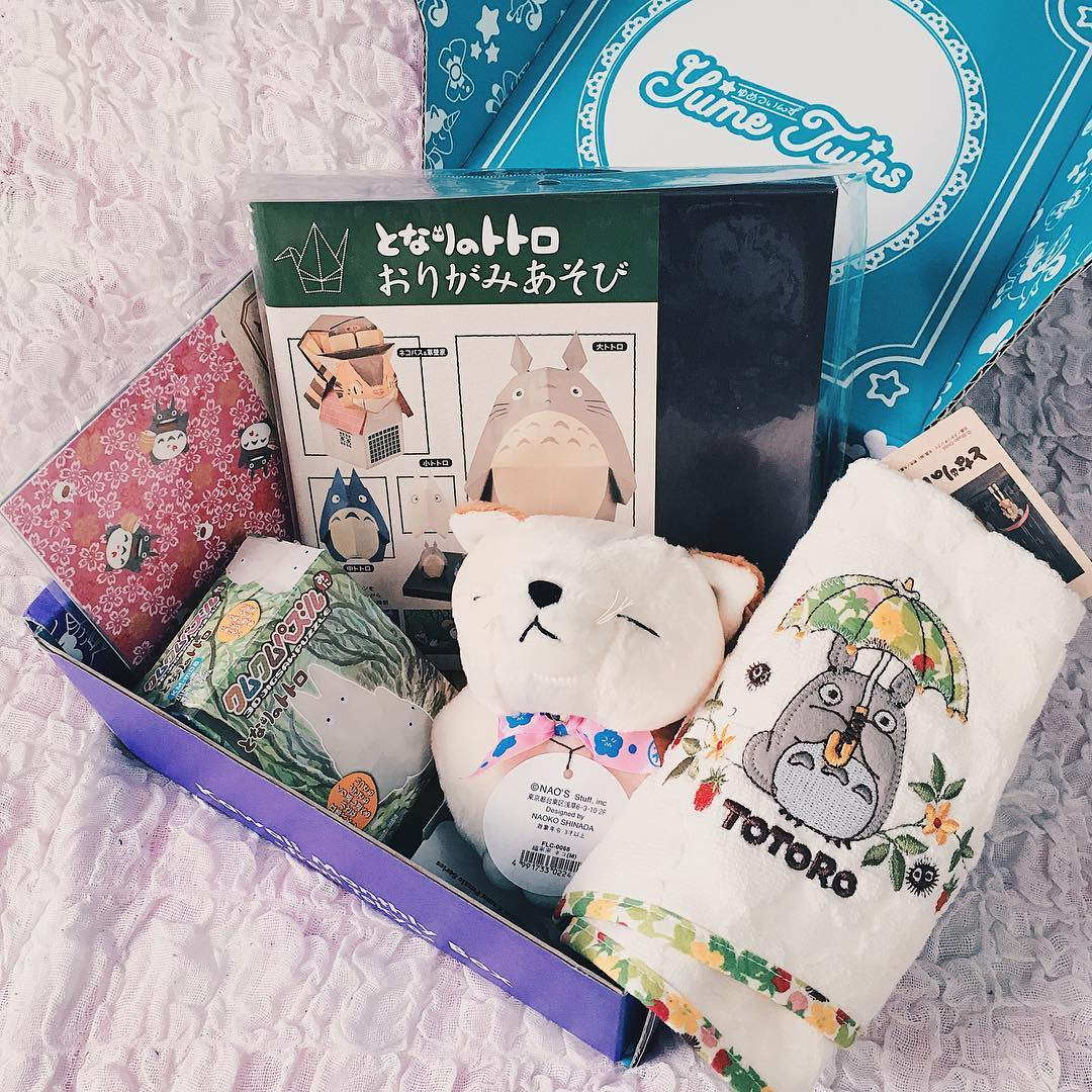yumetwins, box, subscription box, unboxing, totoro, mein nachbar totoro, origami, plüsch